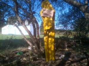 Pendu jaune 2